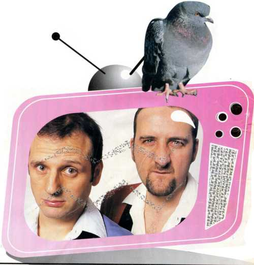 Mark and Lard on TV with pigeon